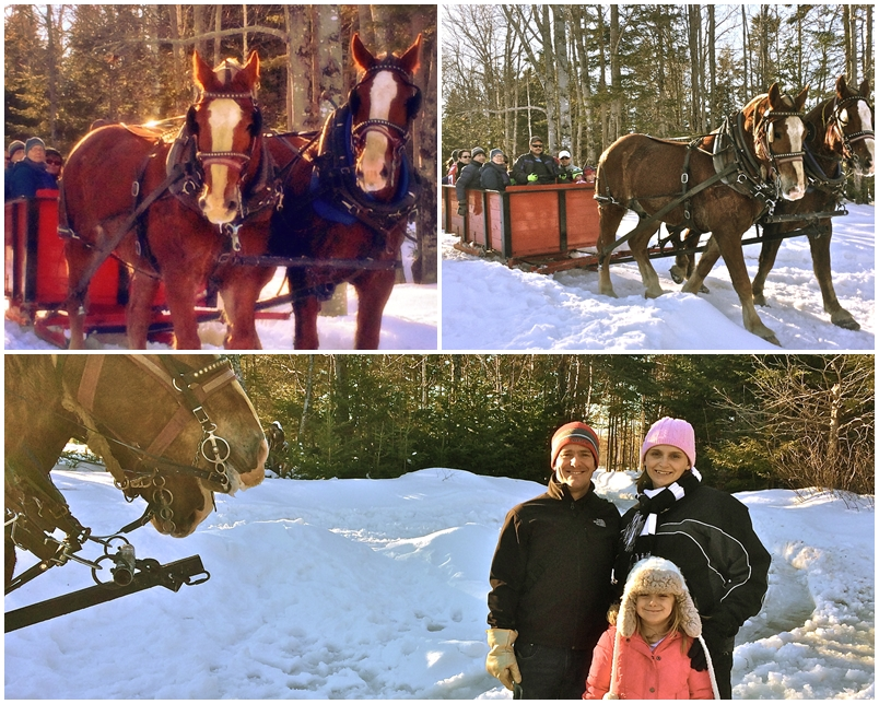 Sleigh Ride Page